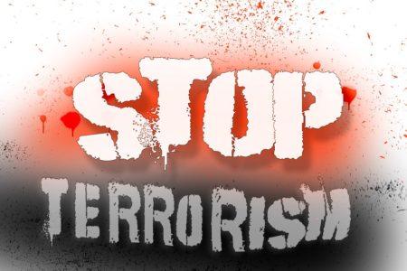 terrorism in hindi